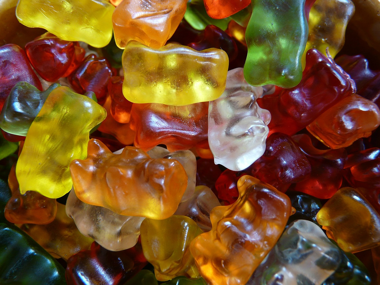 gummi bears fruit gums bear free picture