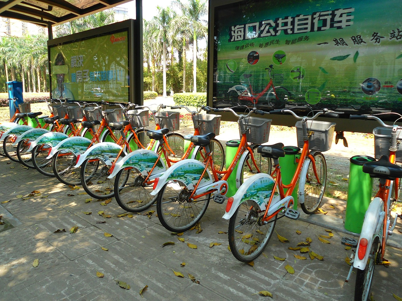 haikou china bikes free photo