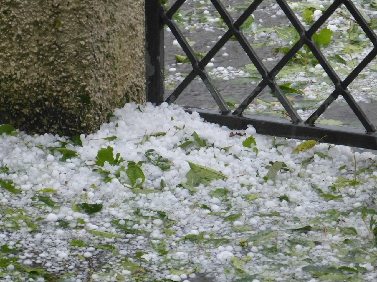 hail,precipitate,hailstones,storm,free pictures, free photos, free images, royalty free, free illustrations, public domain