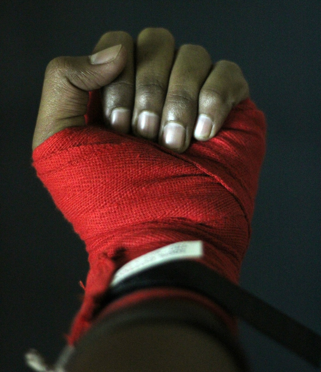 hand boxing boxer free photo