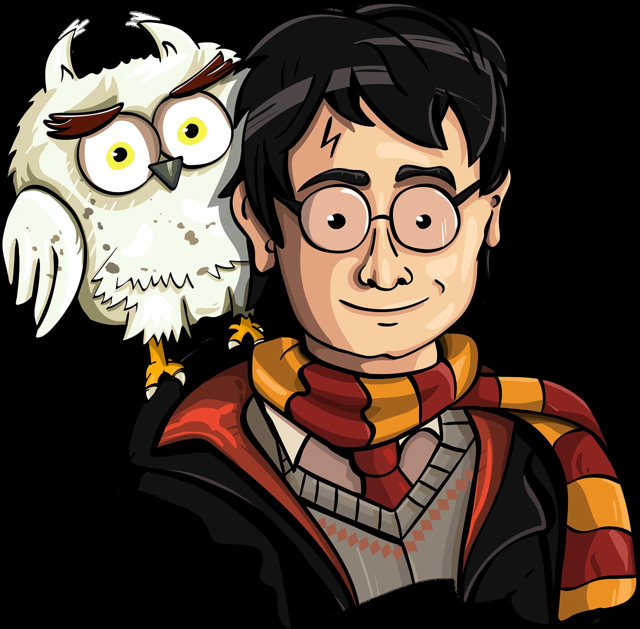 Harry Potter Fan Art The Wizard Owl Harry Free Image From