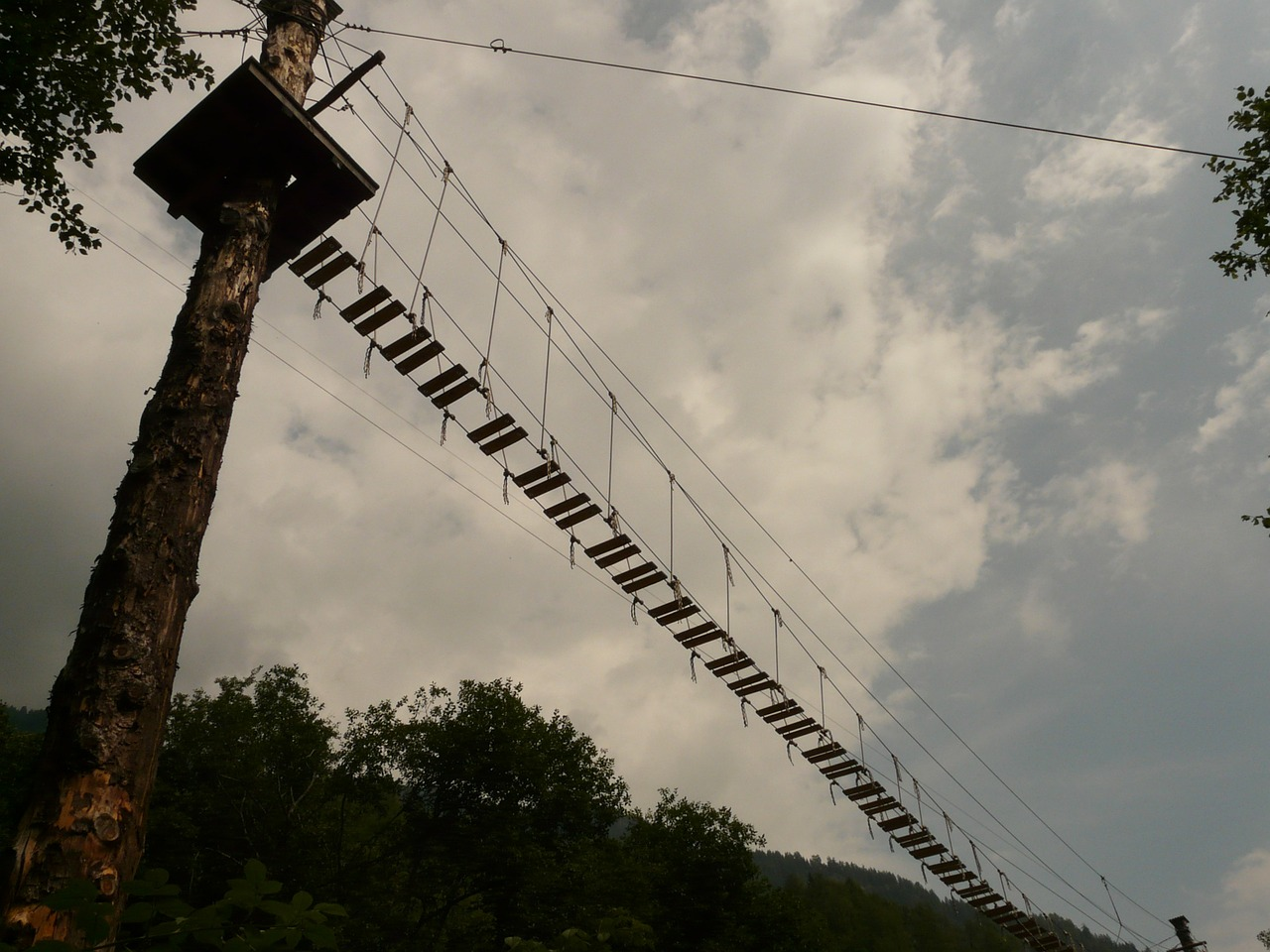 high ropes course bridge risk free photo