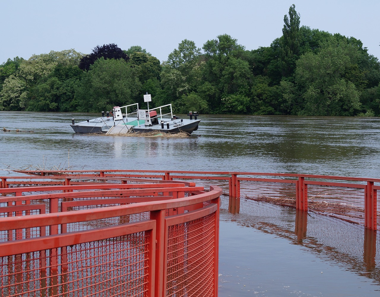 high water ferry terminal elbe free photo