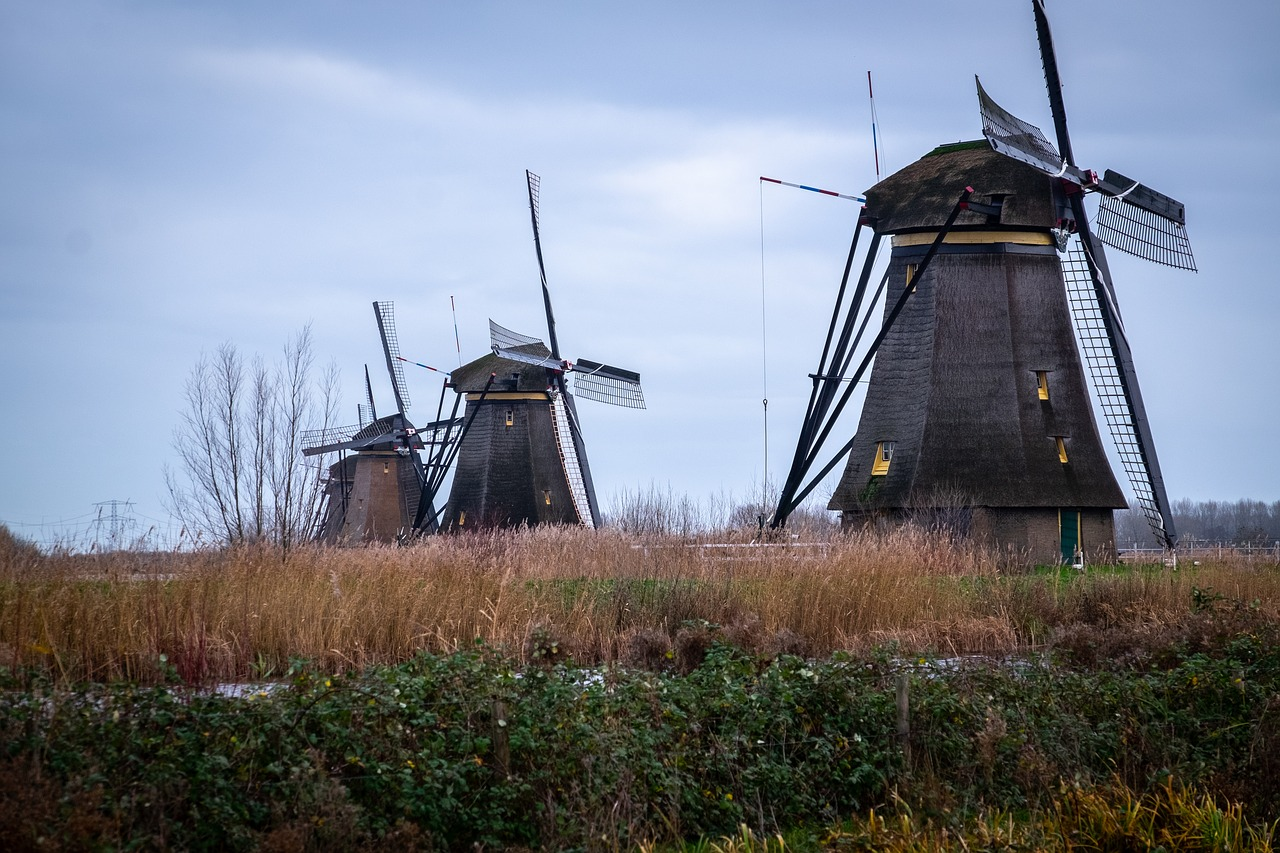holland  kinderdijk  landscape free photo