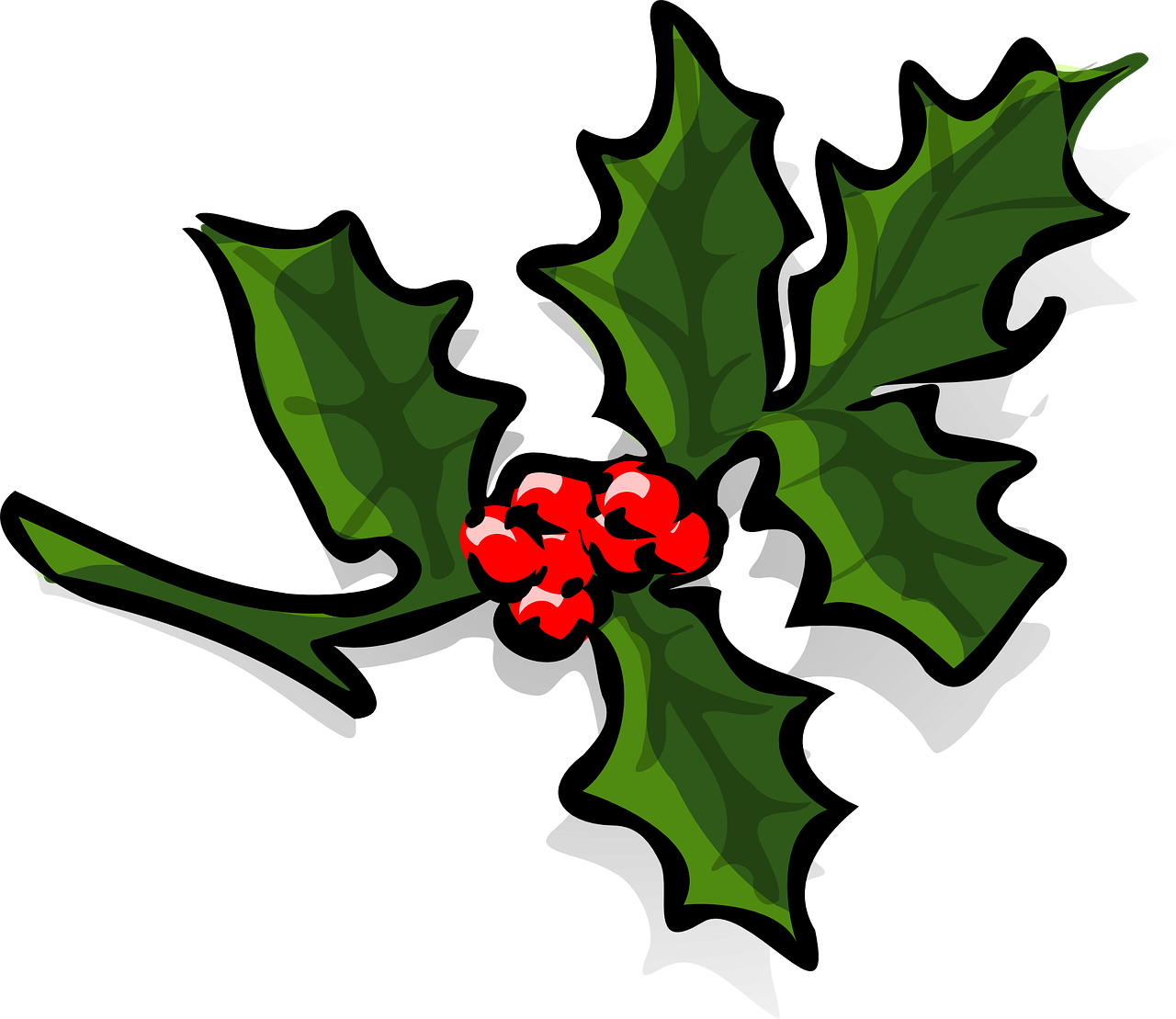 holly holly berries christmas free photo