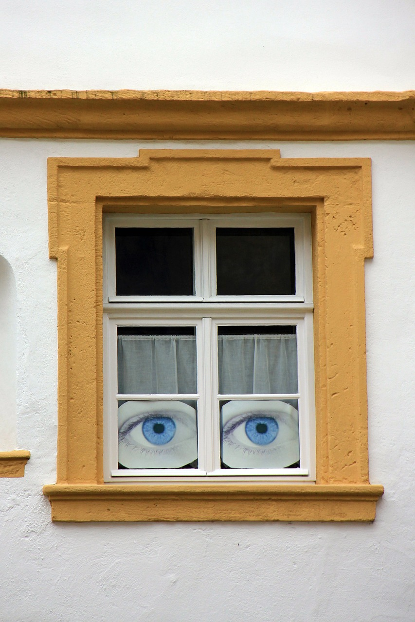 home,window,eyes,building,free pictures, free photos, free images, royalty free, free illustrations, public domain