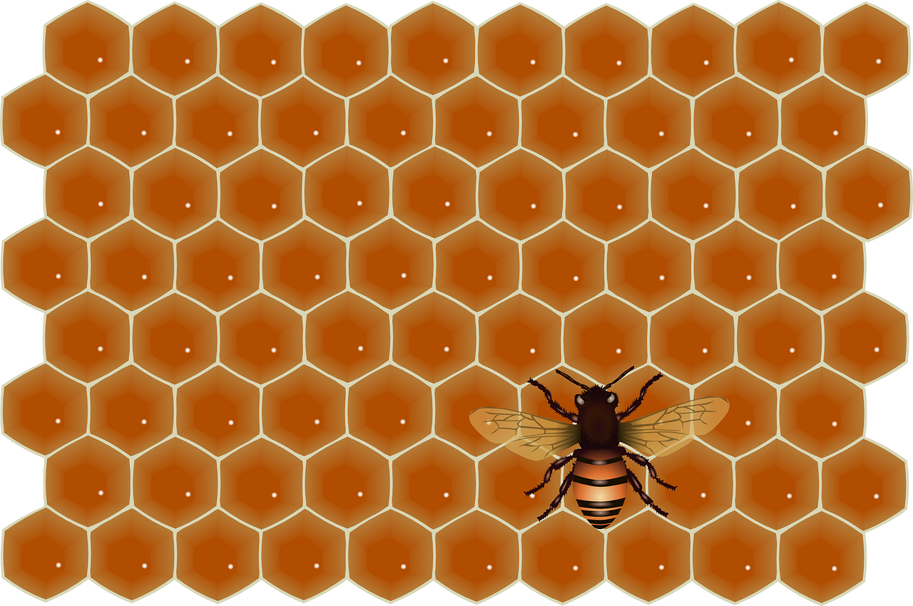 honey,bee,flying,work,insect,sweet,job,honeycomb,fly,free vector graphics,free pictures, free photos, free images, royalty free, free illustrations, public domain