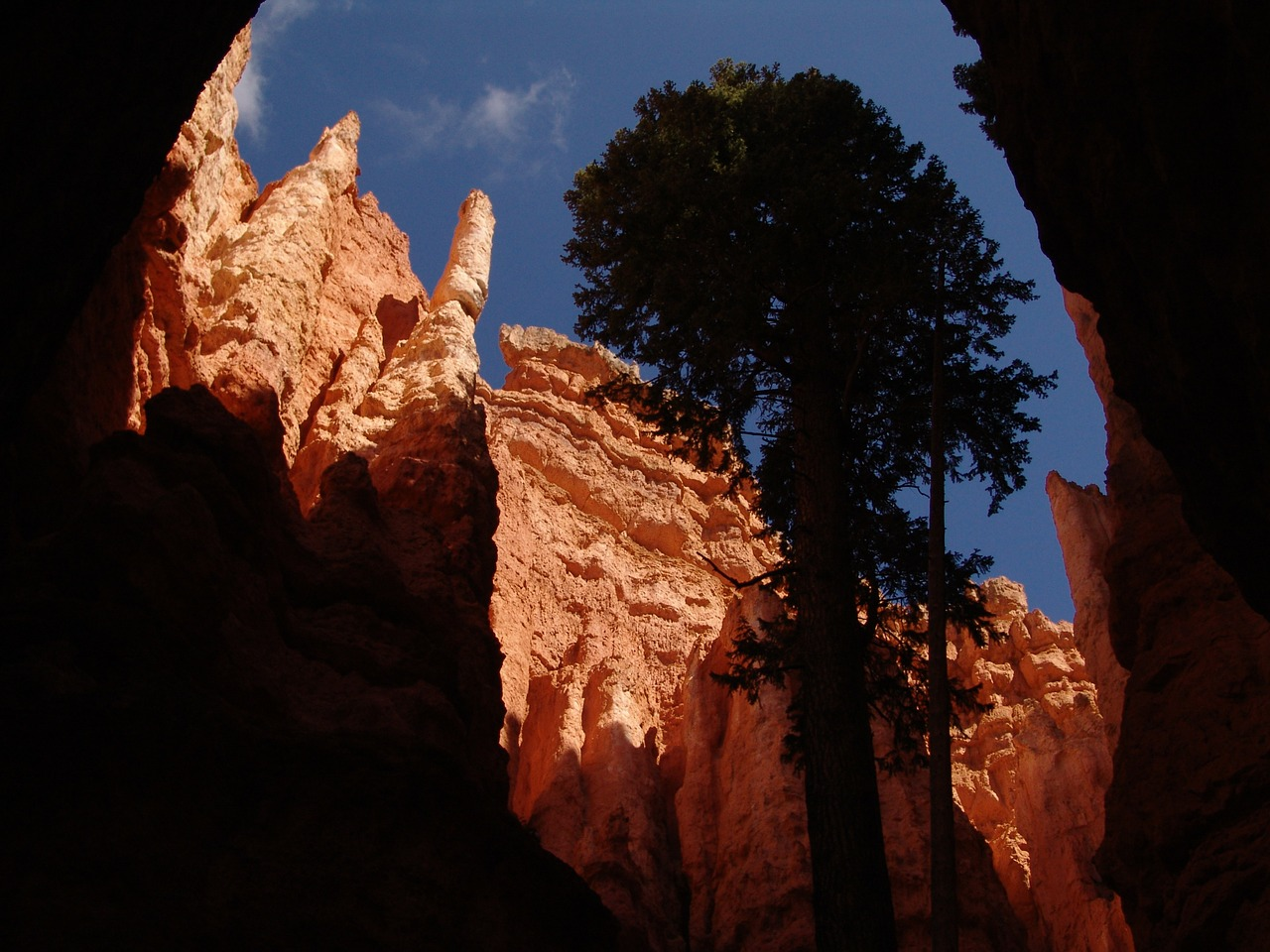 hoodoos bryce canyon bryce canyon national park free photo