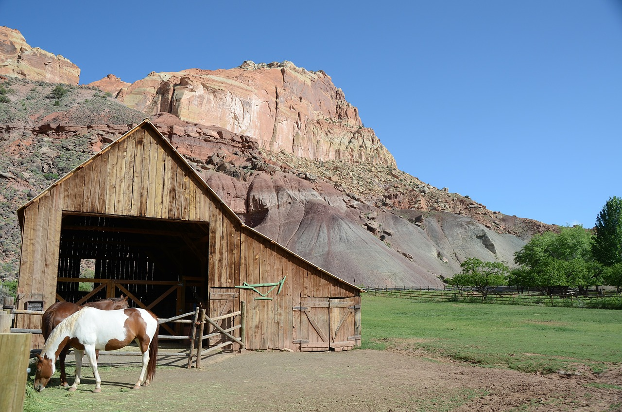 horse barn capitol reef national park free photo