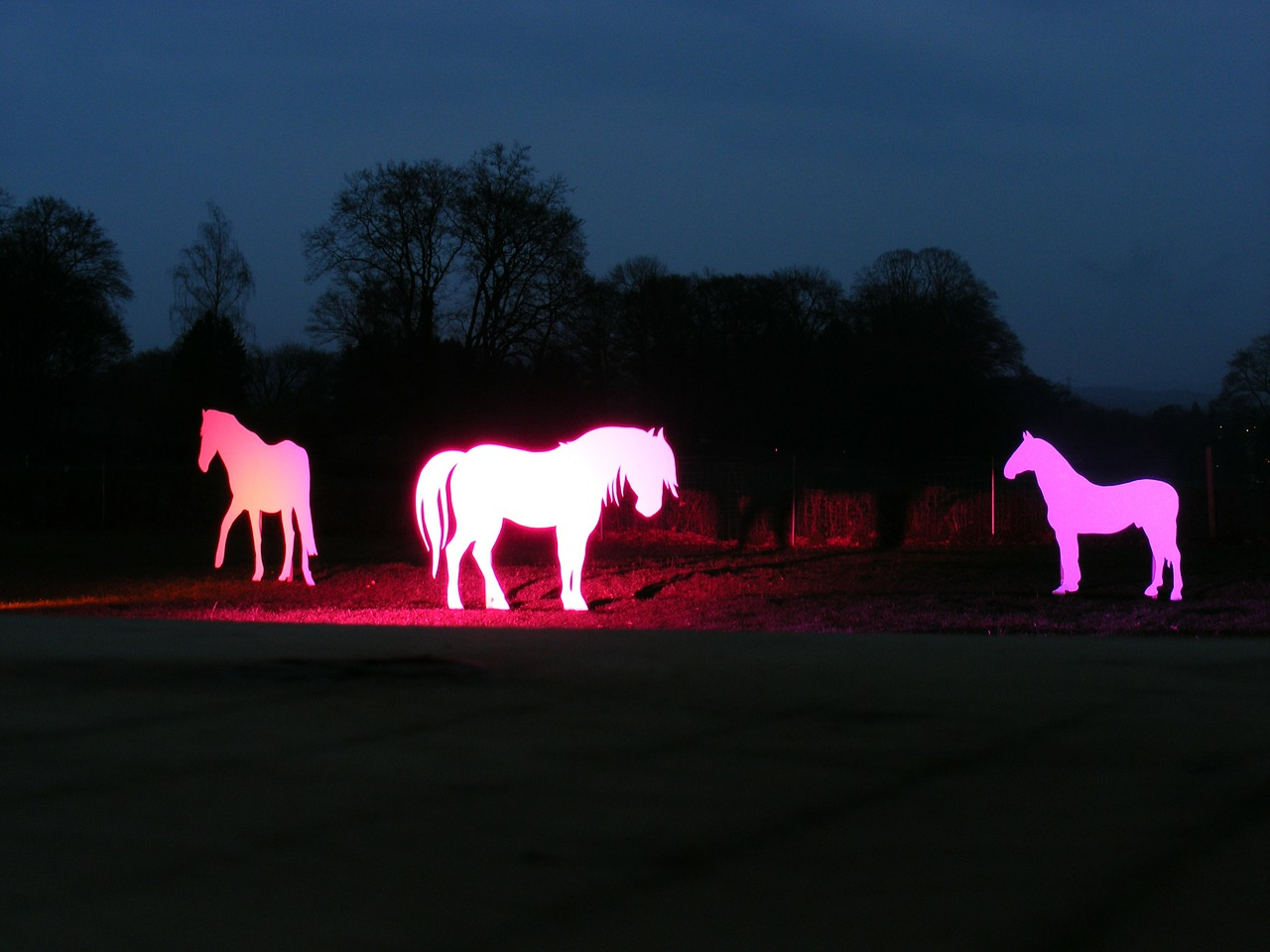 horses silhouettes light installation free photo
