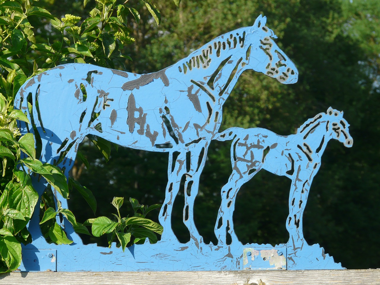 horses blue metal free photo