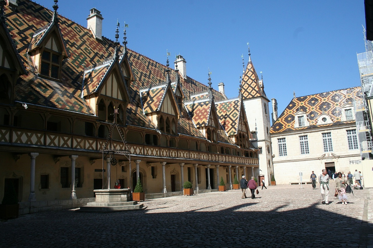 hotel dieu france roof free photo