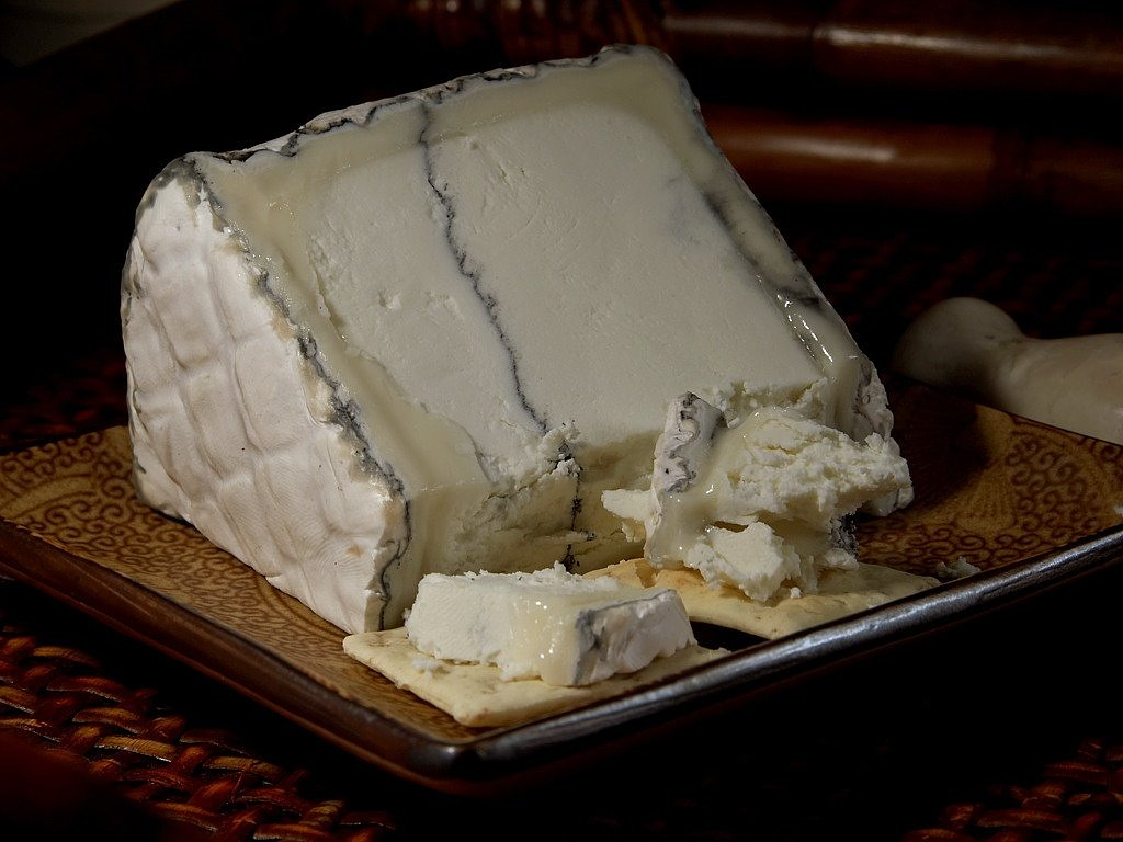 humboldt fog cheese blue mold mold free picture