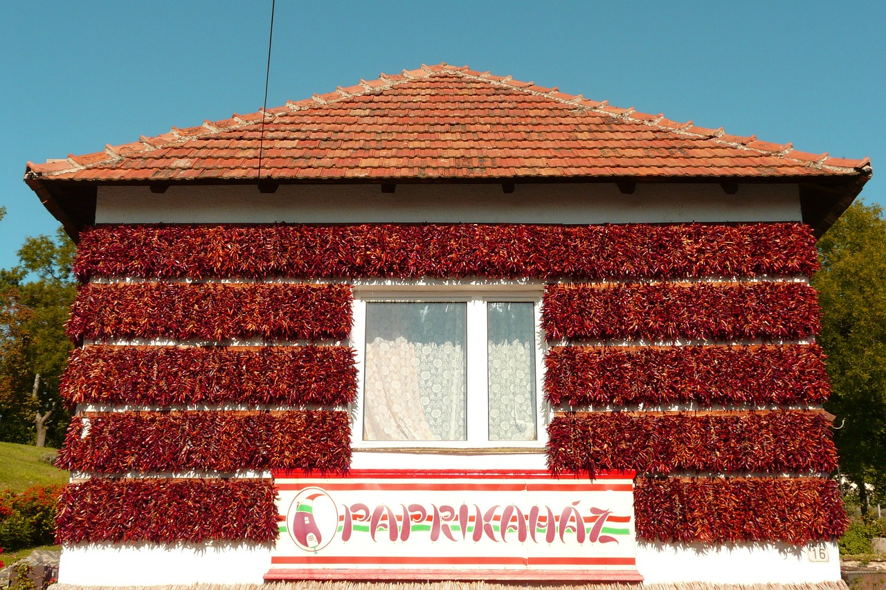 hungary home paprika free photo
