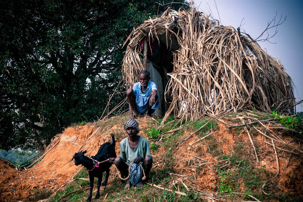 hut thatched shelter free photo