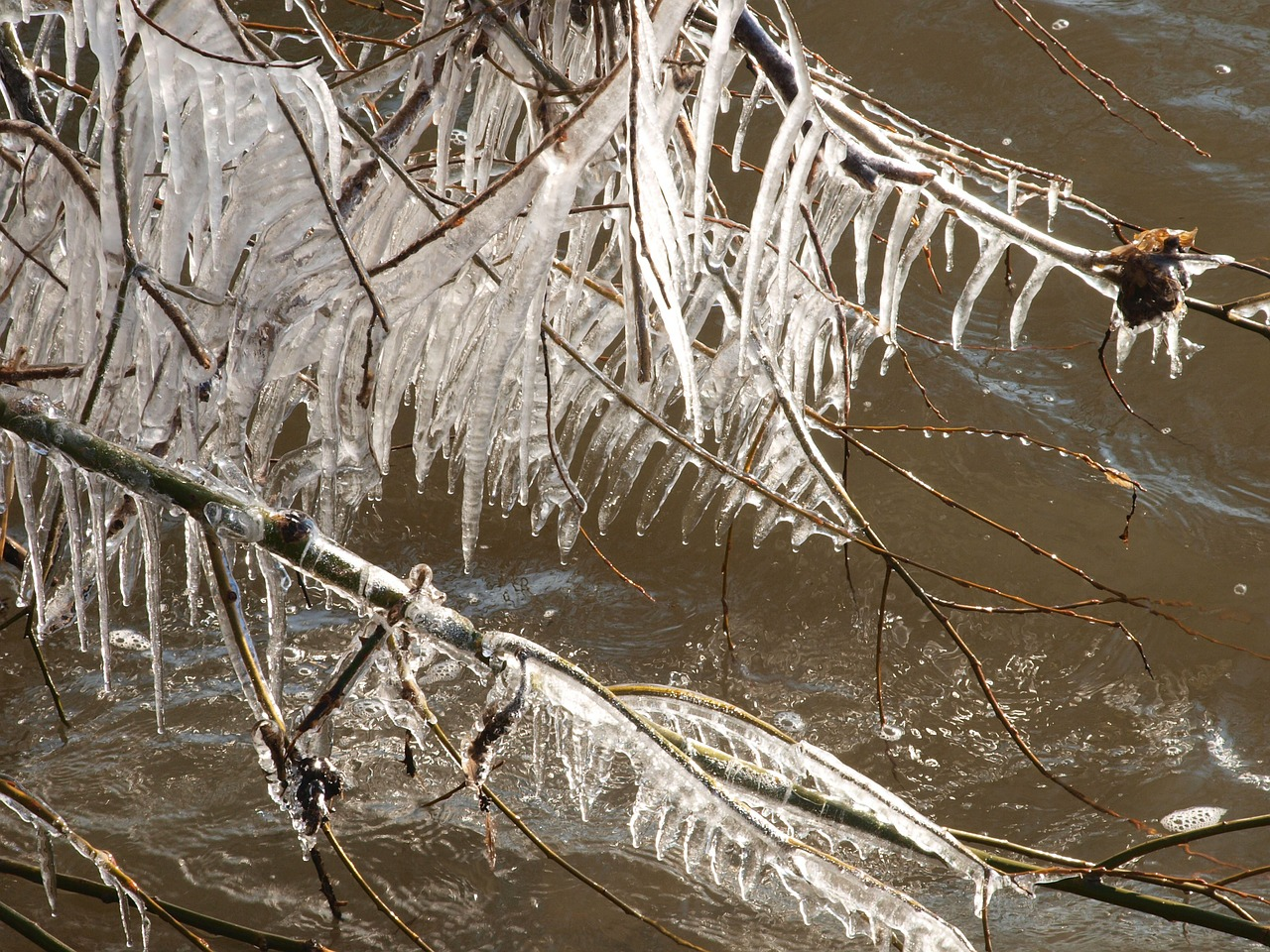 ice icicle winter free photo