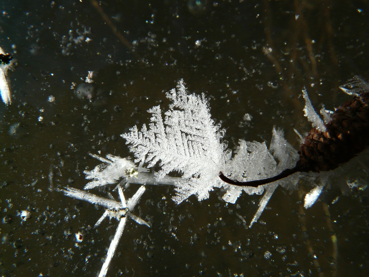 ice crystal ice frozen free picture