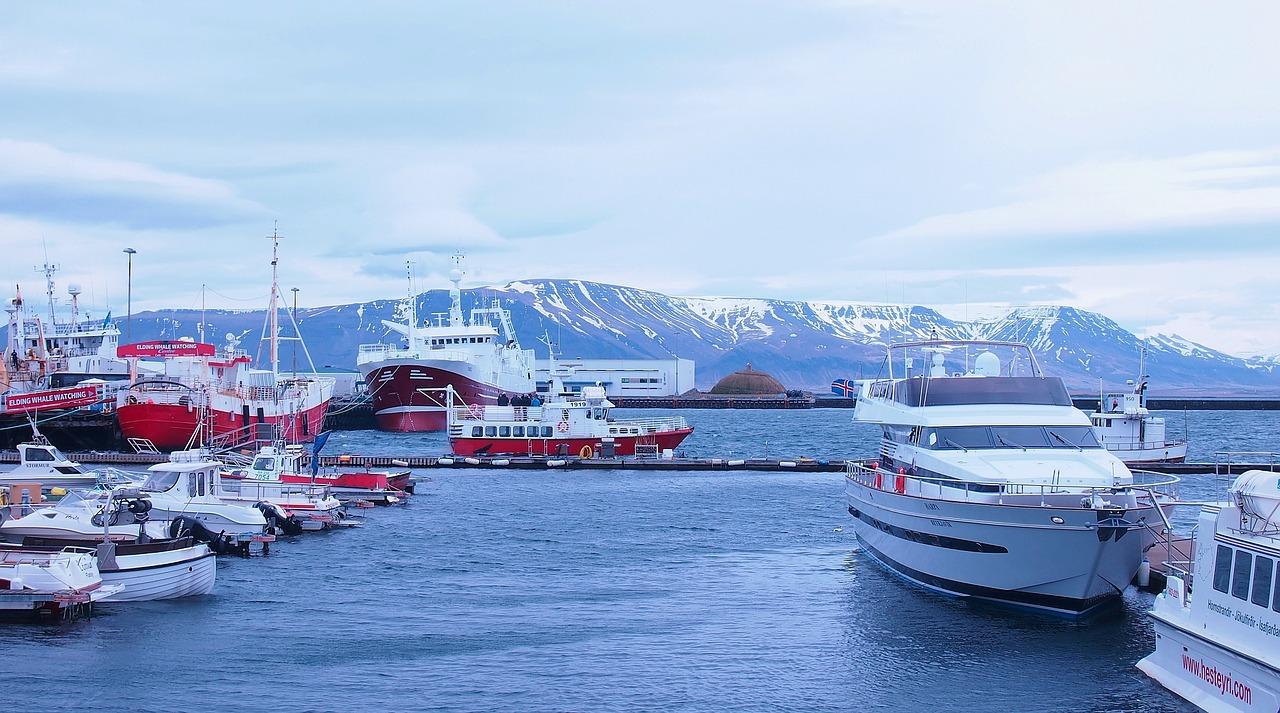 iceland harbor reykjavik free photo