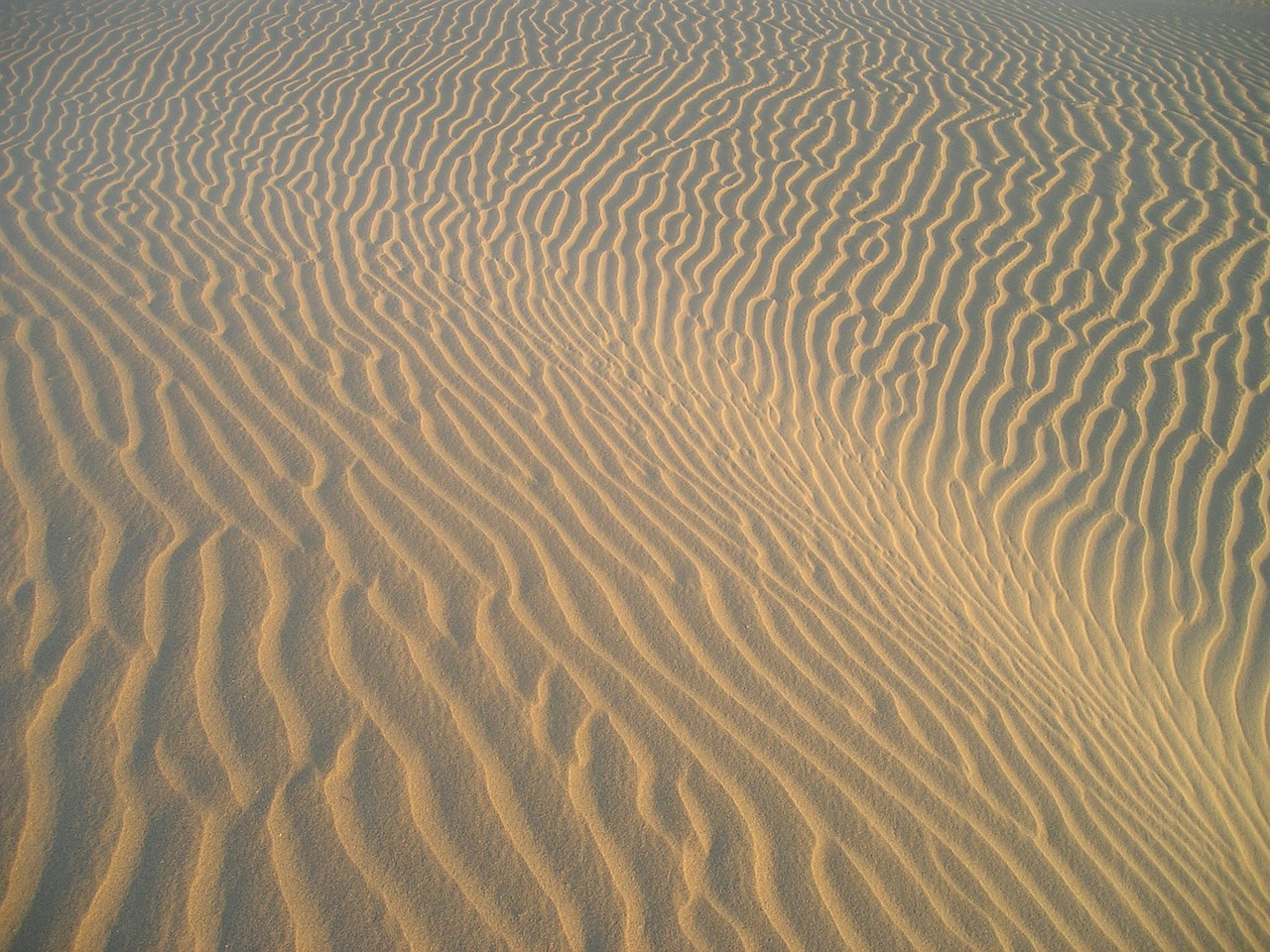 india,desert,sand pattern,sand,pattern,drift,drought,free pictures, free photos, free images, royalty free, free illustrations, public domain