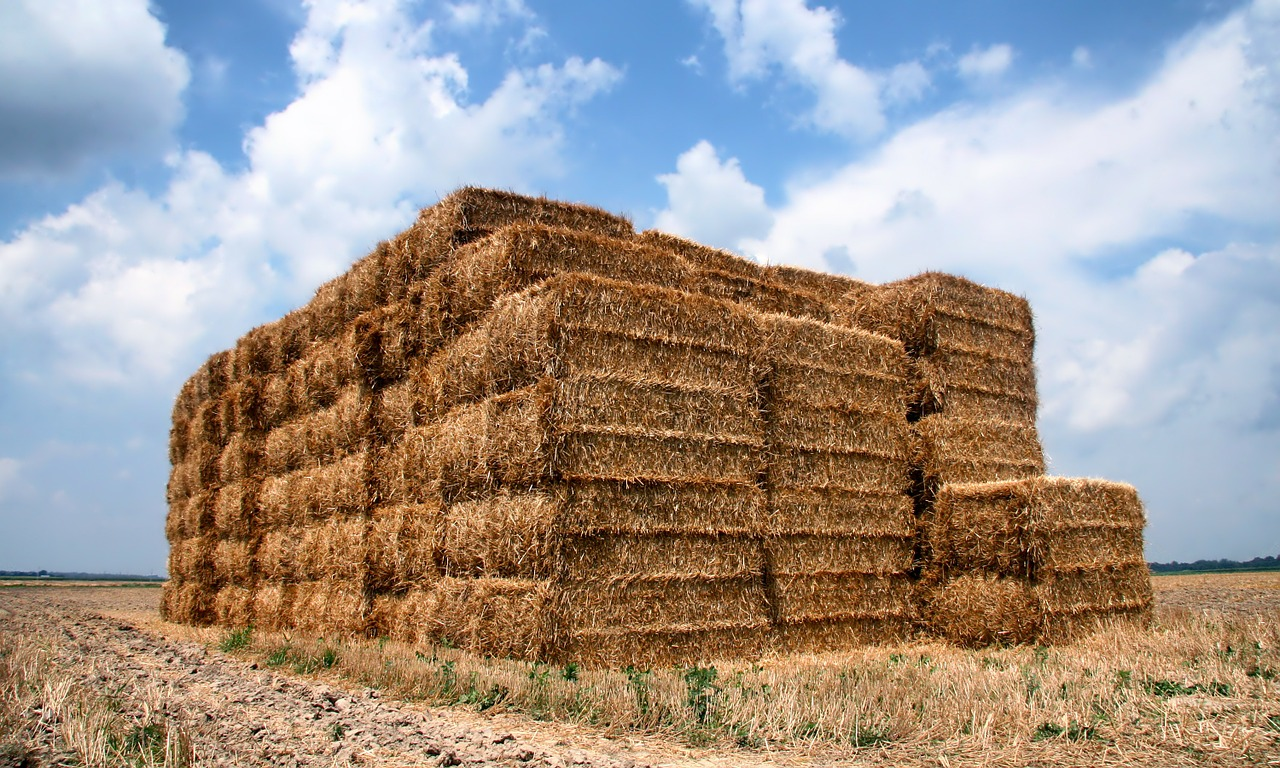 indiana straw bales free photo