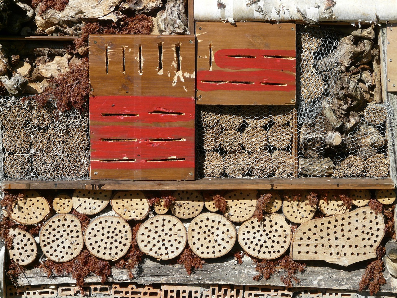 insect hotel insect house insect asylum free photo