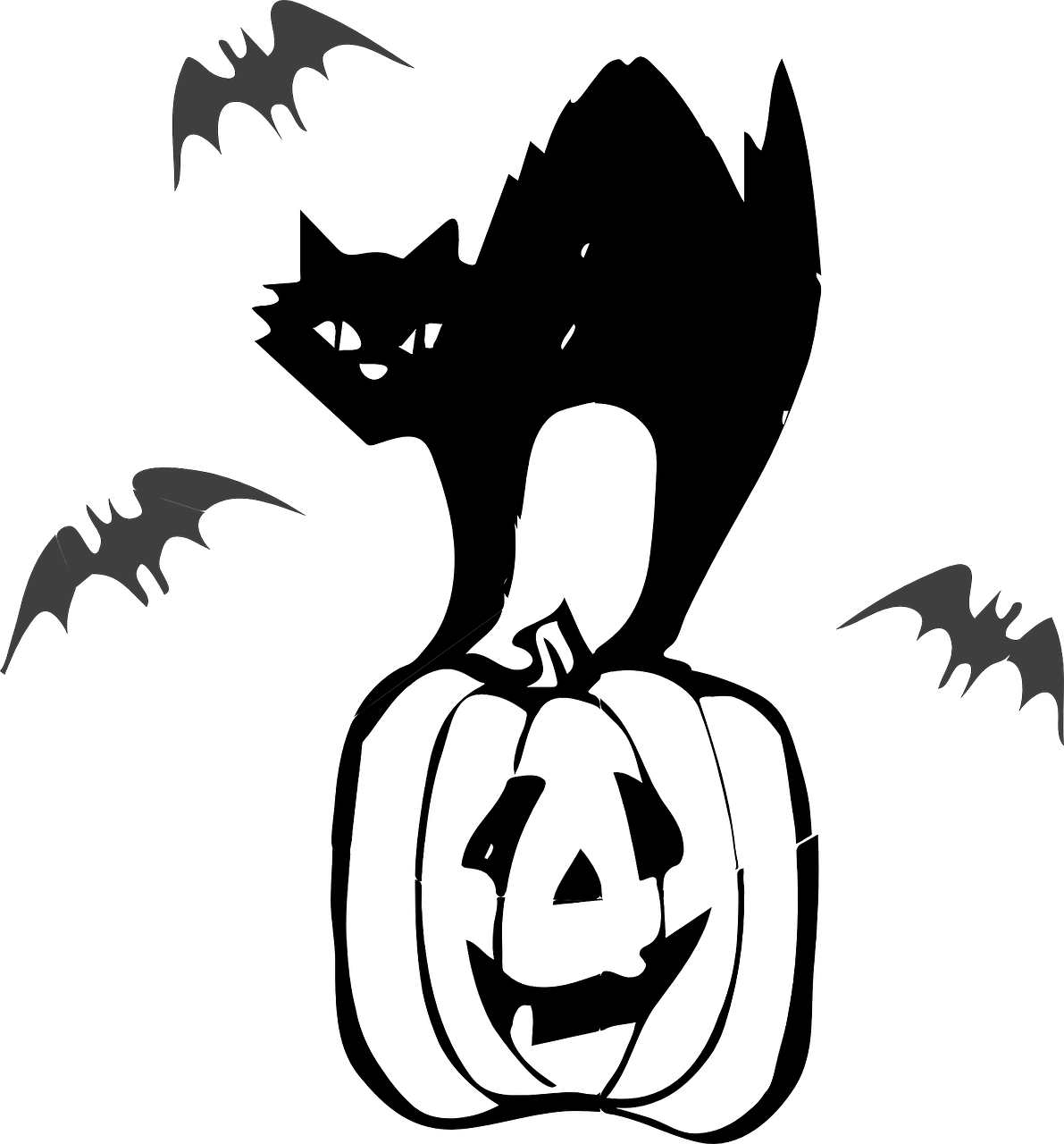 jack o lantern black cat pumpkin free photo
