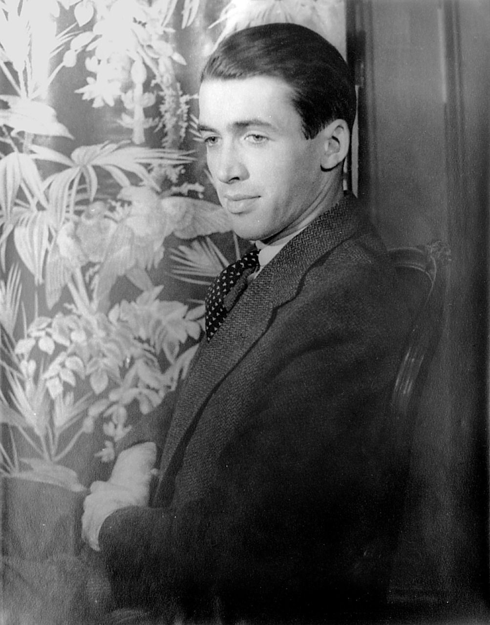 james stewart star actor free photo