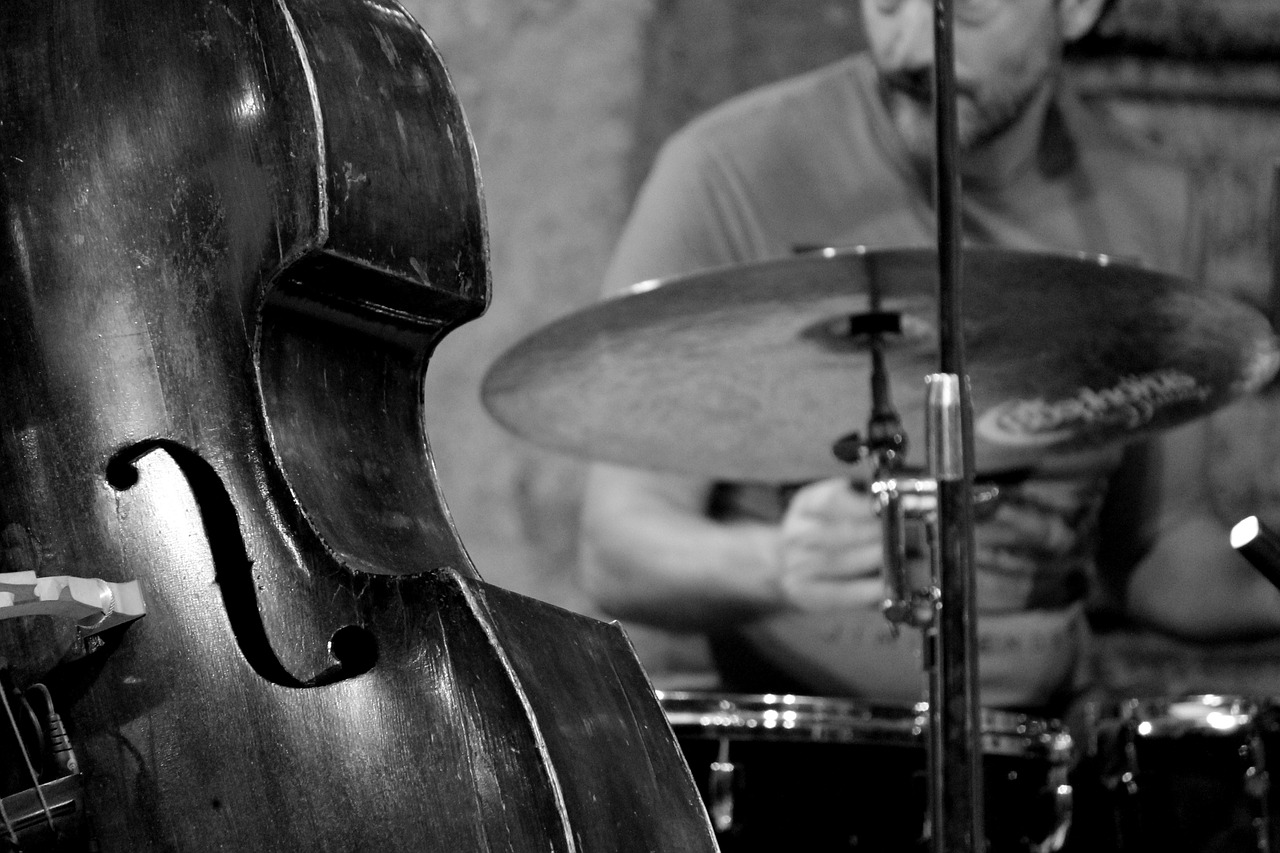 jazz,double bass,music,concert,musical instrument,drums,lectern,free pictures, free photos, free images, royalty free, free illustrations, public domain