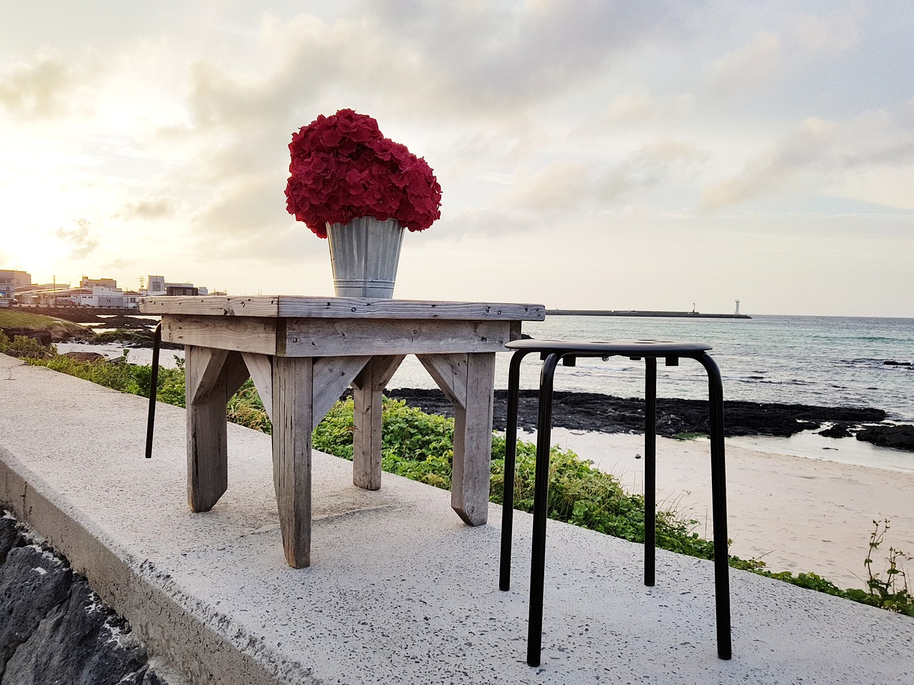 jeju island,sehwa beach,beach,table,flowers,glow,landscape,warm,travel,free pictures, free photos, free images, royalty free, free illustrations, public domain