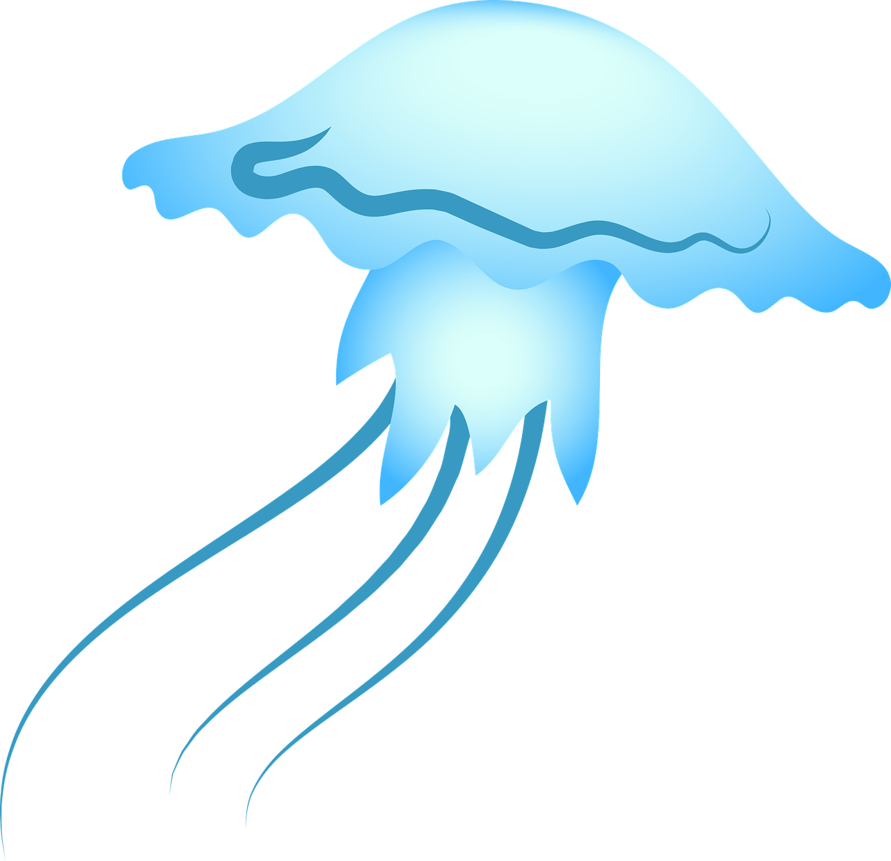 jellyfish,sea,blue,sealife,ocean,free vector graphics,free pictures, free photos, free images, royalty free, free illustrations