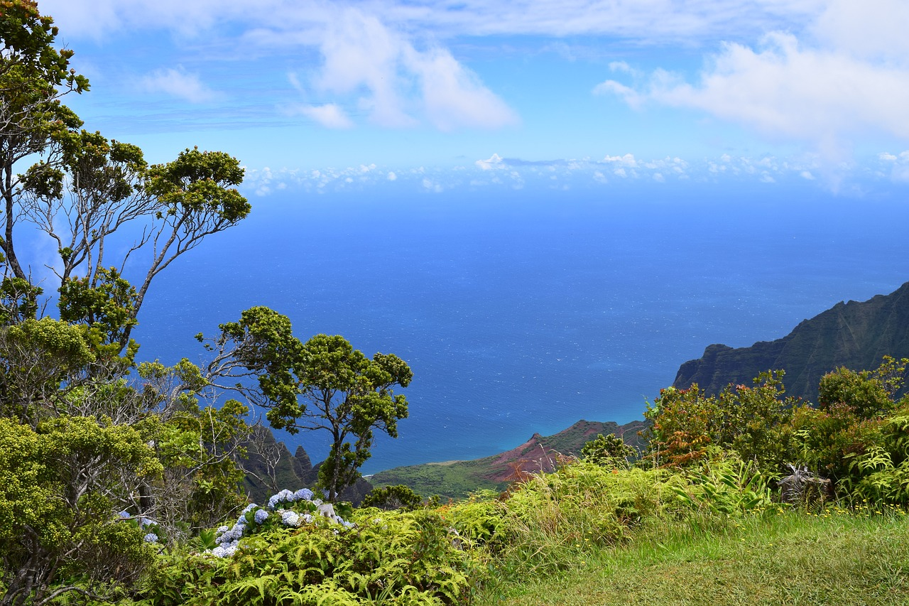 kalalau lookout kauai free pictures free photo