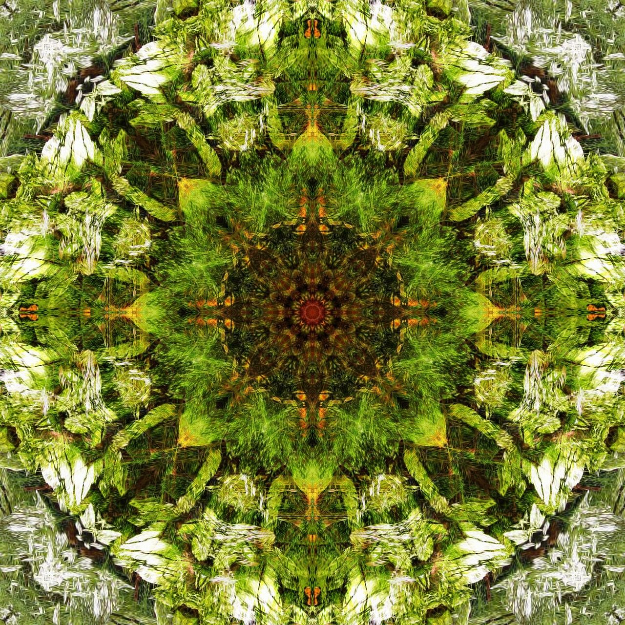 kaleidoscope digital art pattern free photo