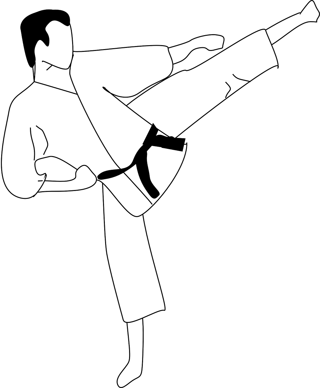 karate,kick,sports,defense,martial art,attack,practice,combat,uniform,kimono,black belt,male,fight,man,kicking,free vector graphics,free pictures, free photos, free images, royalty free, free illustrations, public domain