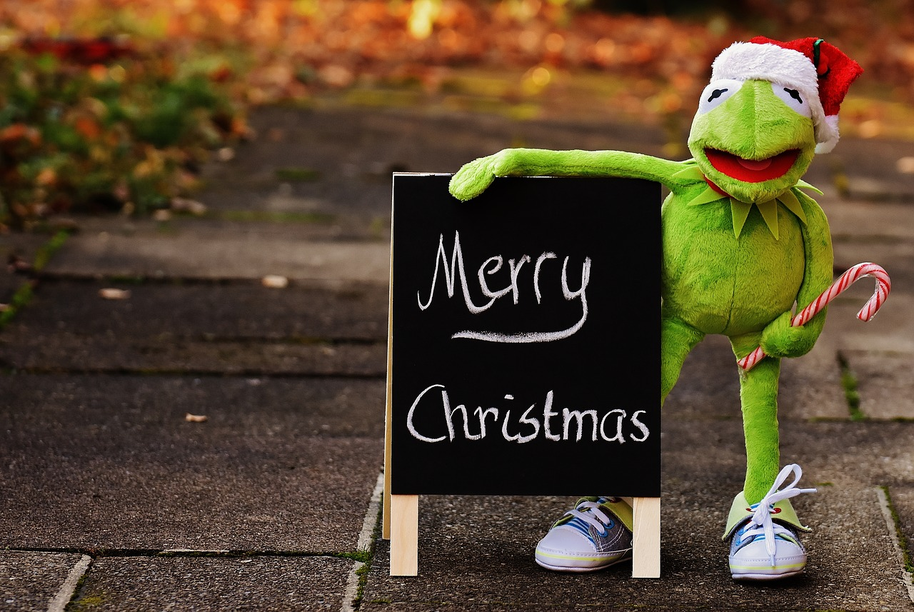 Kermit,frog,christmas,santa hat,cute - free photo from needpix.com