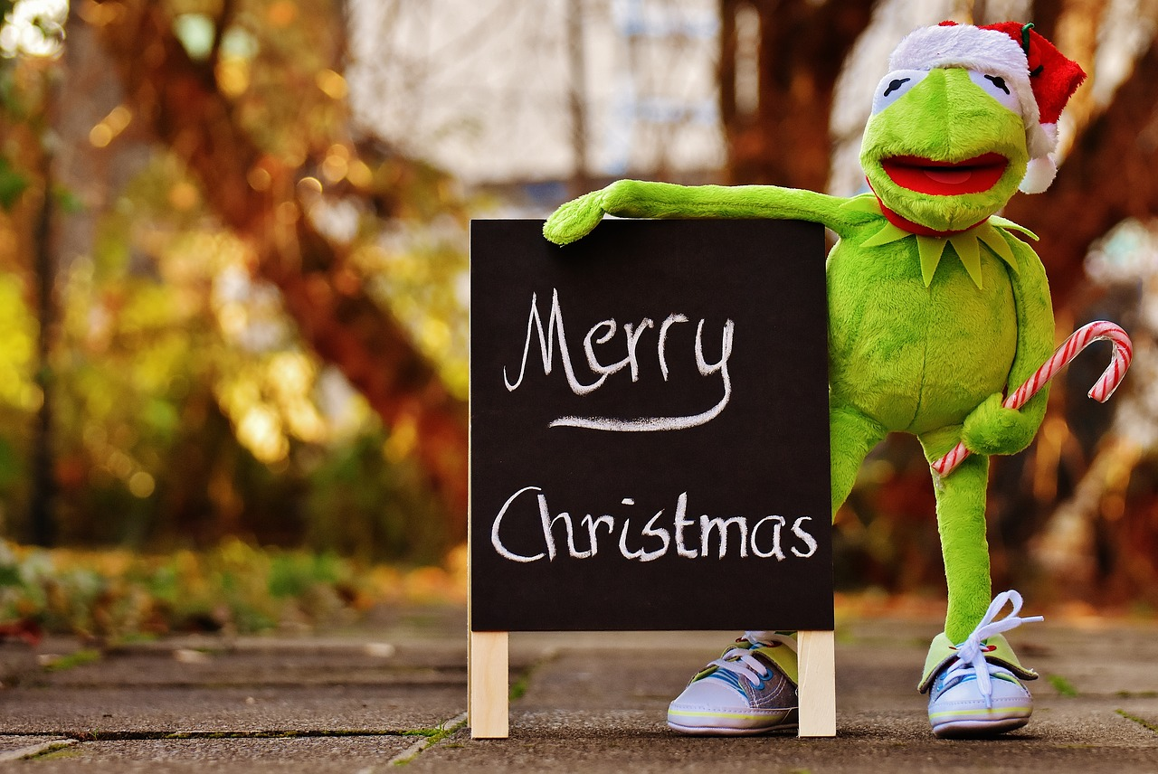 Kermitfrogchristmassanta hatcute free photo from needpix kermit frog christmas m4hsunfo