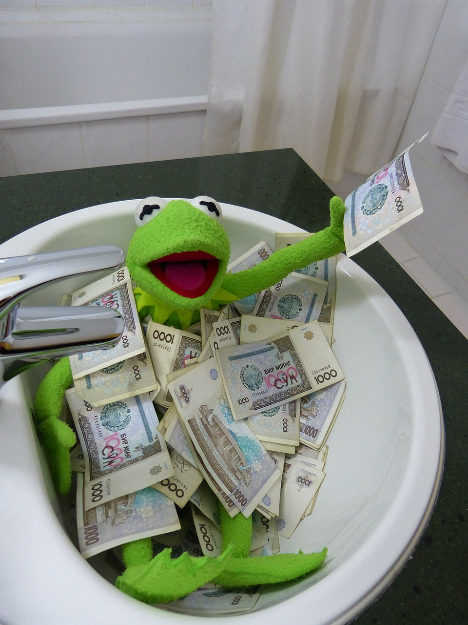 kermit frog money free photo