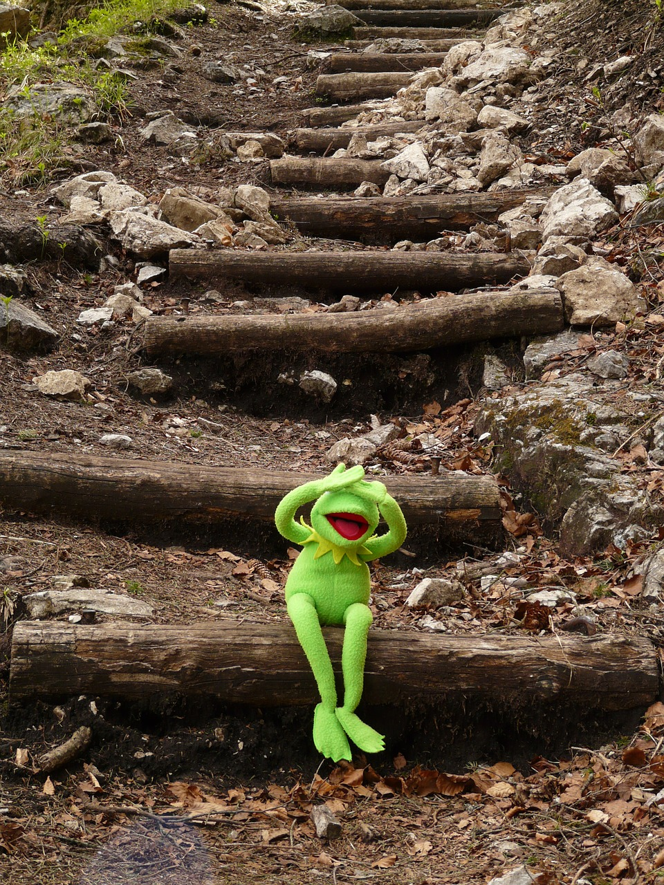 kermit frog sit free photo