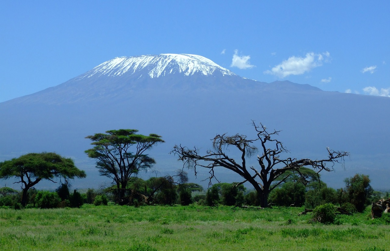 Kilimanjaro,kenya,mountain,amboseli,safari - free image from needpix.com