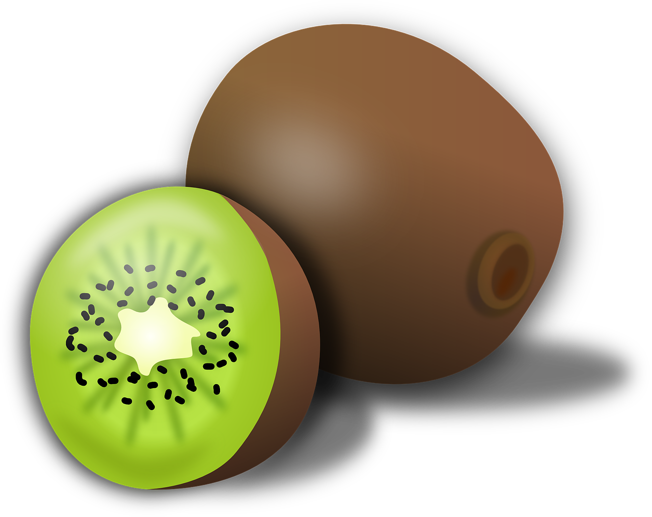 kiwi kiwifruit fruit free photo