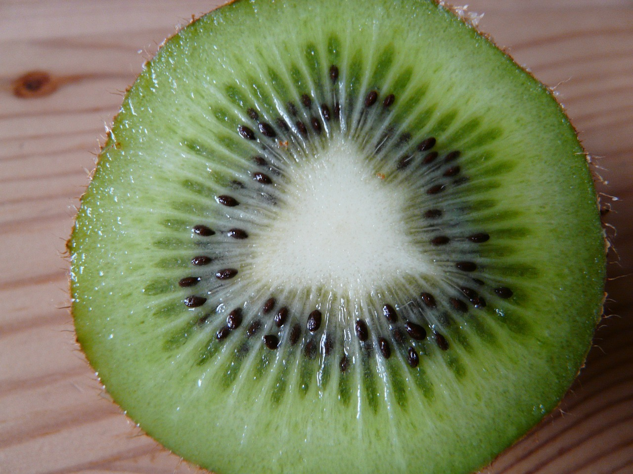 kiwi cut fruit free photo