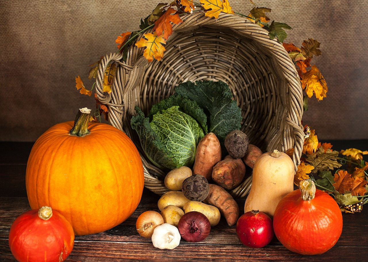 pumpkin vegetables autumn free photo