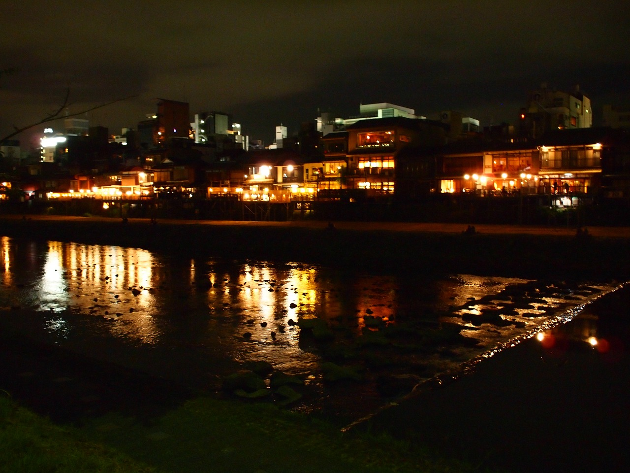 kyoto night kamogawa free photo