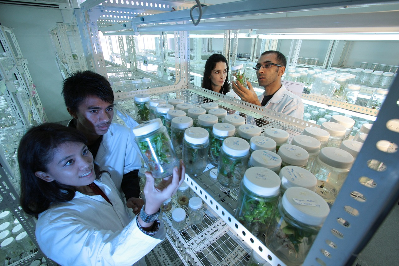 laboratory scientists research free photo