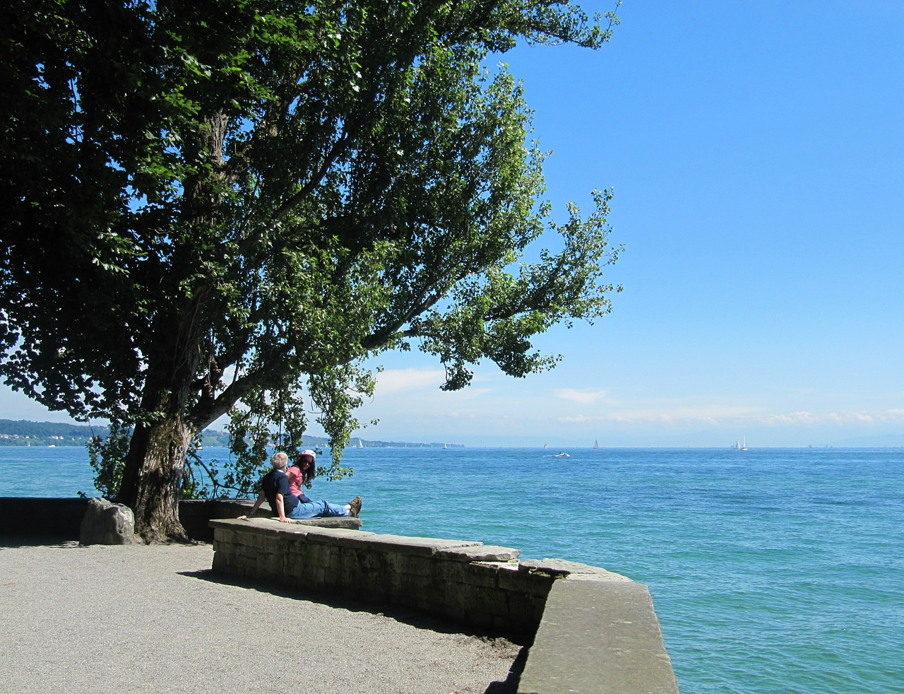 lake constance mainau island free photo