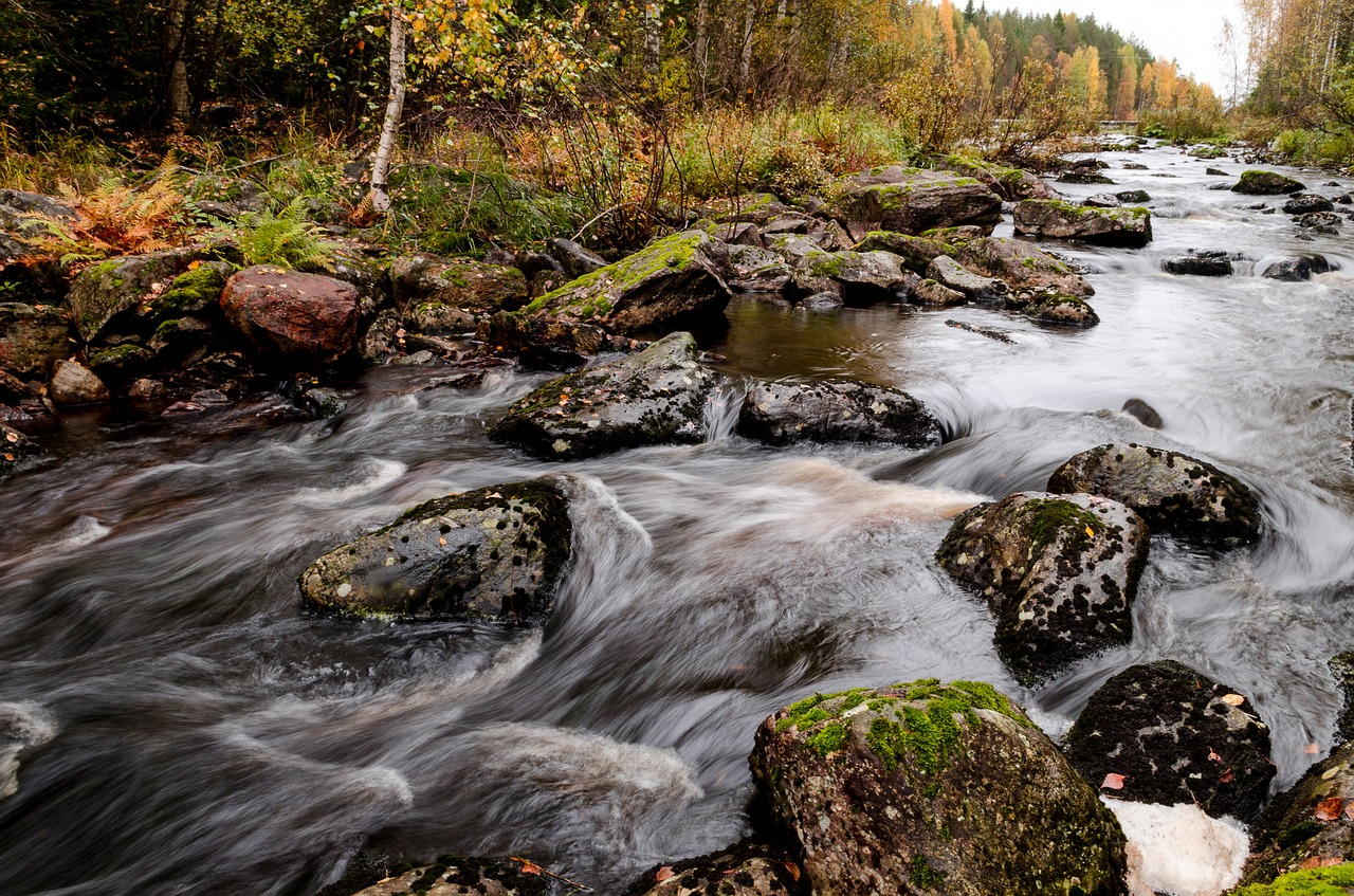 landscape,landscape photo,river,autumn,flowing water,water,palokki,july water,finnish,free pictures, free photos, free images, royalty free, free illustrations