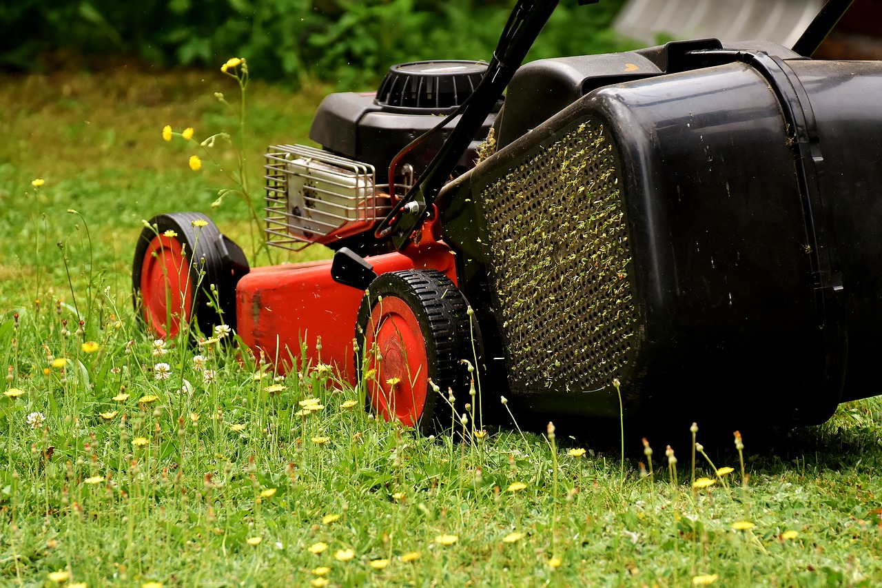 lawn mower mow lawn mowing free photo