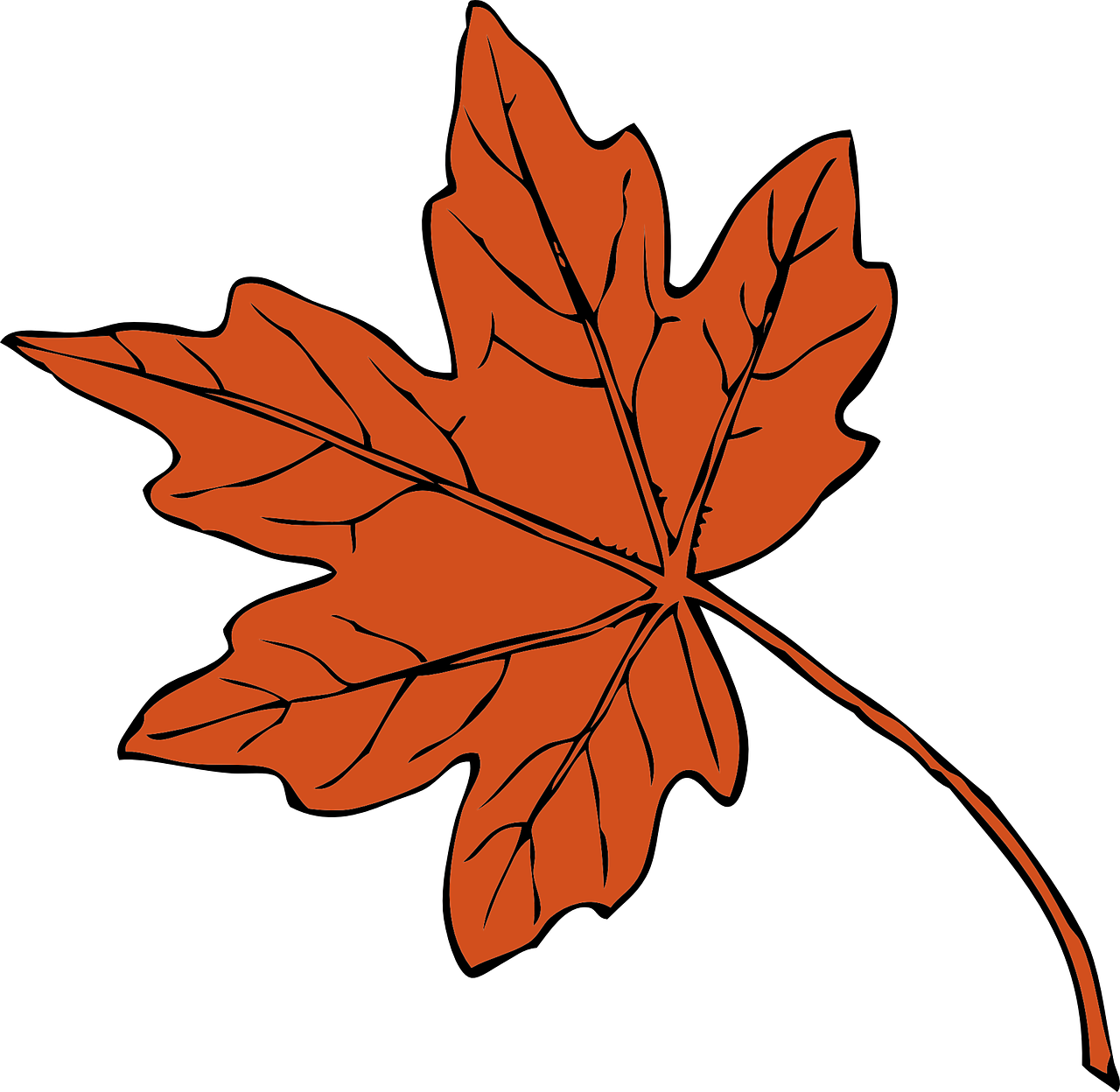 leaf orange isolated free photo