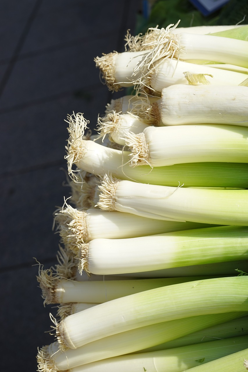 leek vegetables healthy free photo
