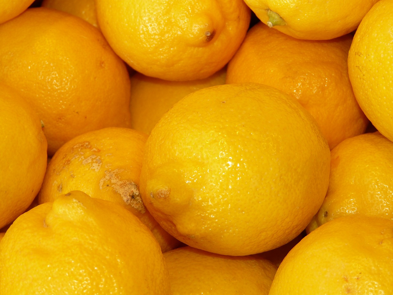 lemons sour fruity free photo
