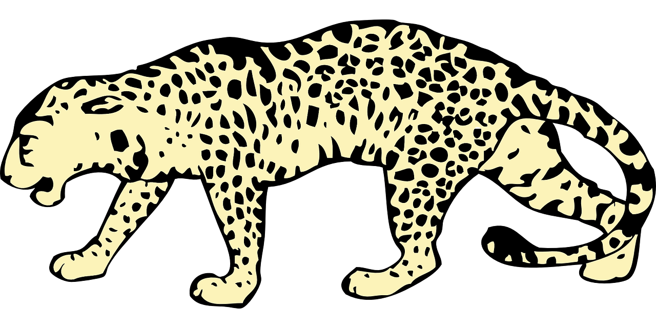 leopard,spotted,crouched,animal,mammal,hunting,wildlife,print,zoo,africa,safari,carnivore,predator,danger,feline,jungle,exotic,textile,dangerous,wilderness,hunted,panther,fast,material,hybrid,leather,fabric,coat,dots,nocturnal,solitary,free vector graphics,free pictures, free photos, free images, royalty free, free illustrations, public domain